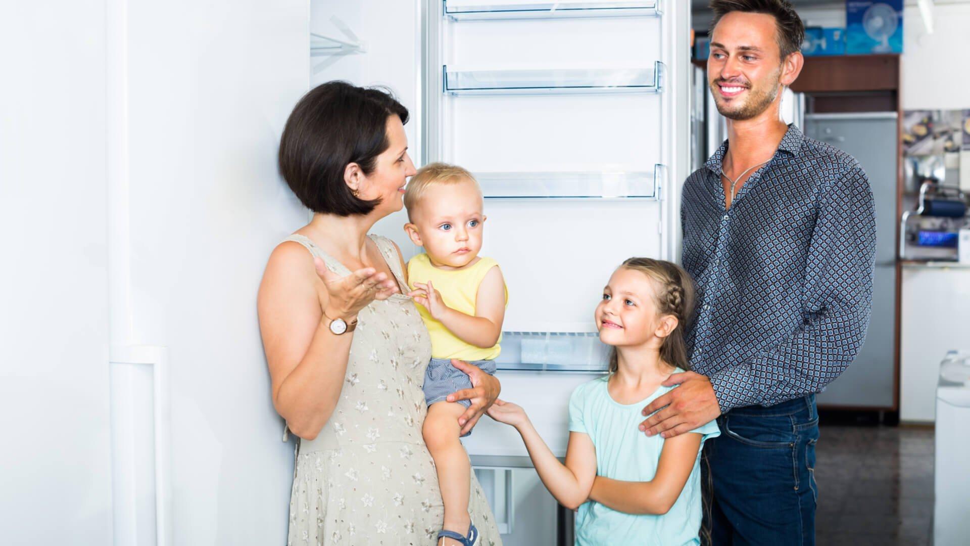 Cum cumperi cea mai buna lada frigorifica 4